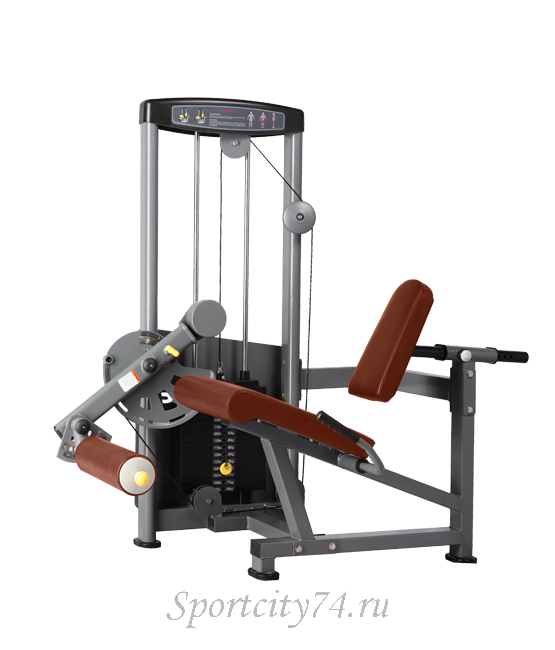 Manual home gym magnum mg 3140 pdf free gallery of images fandeluxe Choice Image